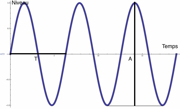 L'amplitude et la dynamique